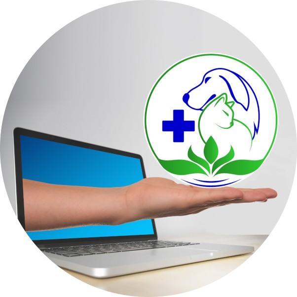 Állatorvoslás szelíden Homeopátia és természetgyógyászat az állatorvos szolgálatában, Konzultációk